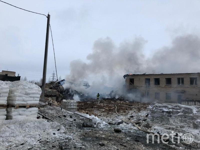 Фото: ГУ МЧС по Ленинградской области.