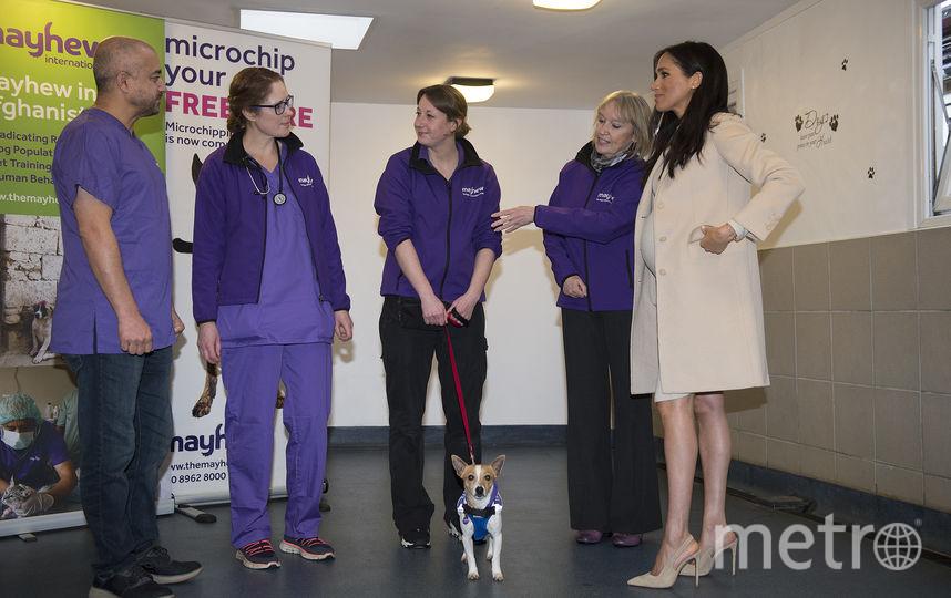 Меган Маркл посетила благотворительную организацию The Mayhew. Фото Getty