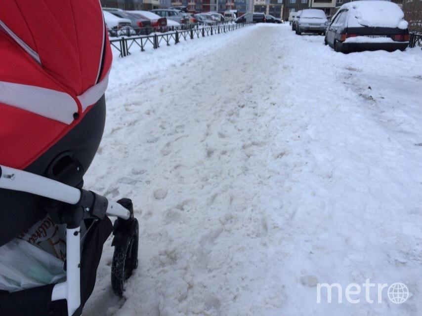 Активисты нашли места в Петербурге, где совсем не убирают снег. Фото предоставлено активистами