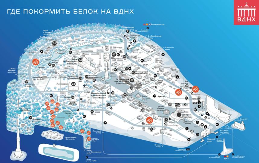 Места, где размещены кормушки. Фото mos.ru