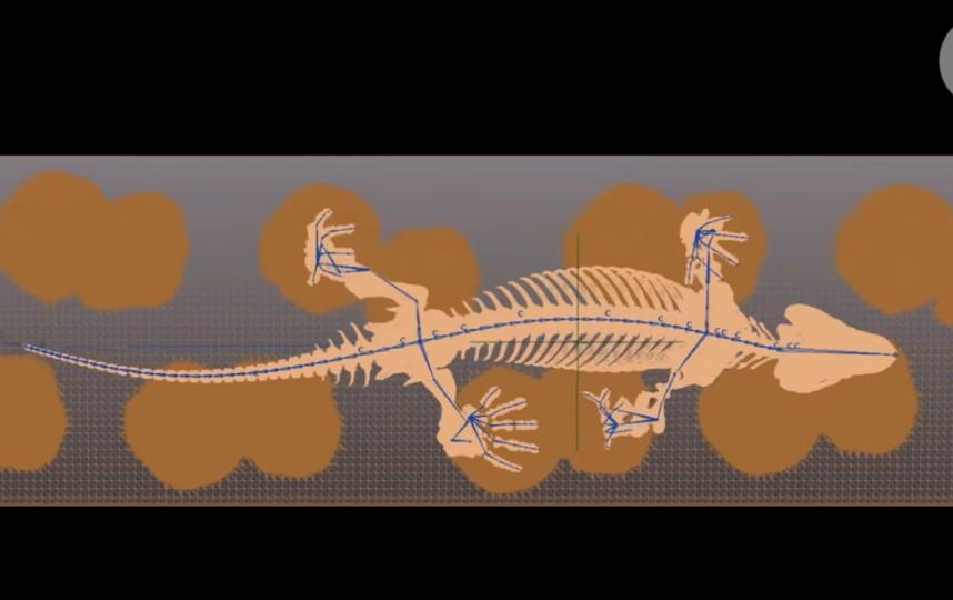 Инженеры оживили скелет существа, жившего 290 млн лет назад: Видео. Фото Скриншот Youtube