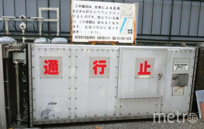 В Токио обнаружили граффити, автором которого может быть Бэнкси. Фото AFP