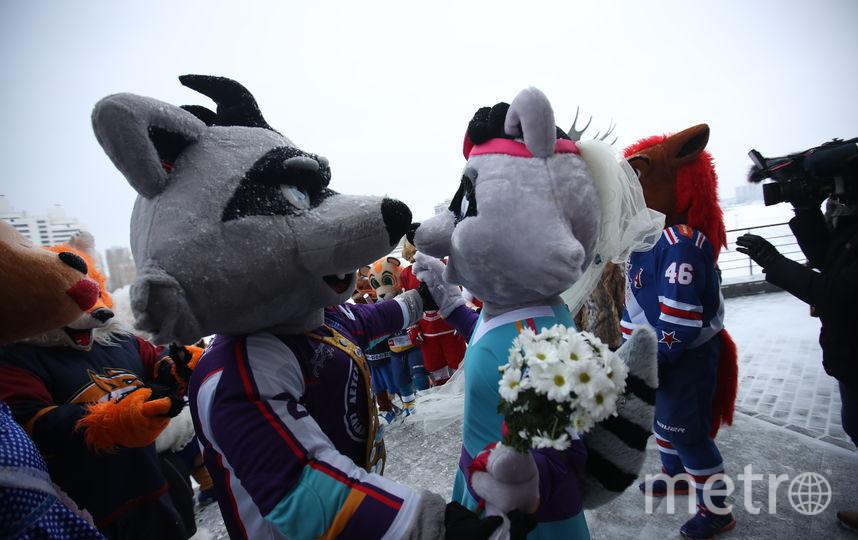 Свадьба маскотов. Фото Photo.khl.ru, Голованов Андрей, Юрий Кузьмин, Владимир Беззубов