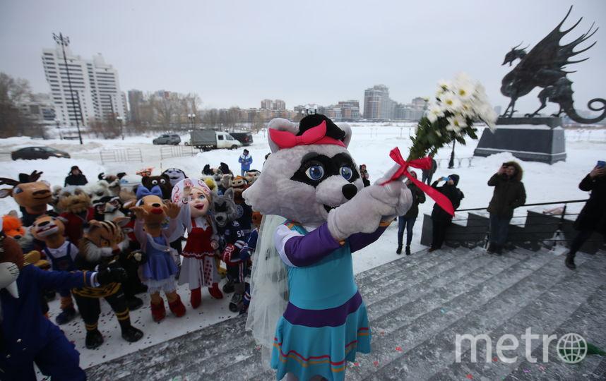 Енотиха бросает букет невесты. Фото Photo.khl.ru, Голованов Андрей, Юрий Кузьмин, Владимир Беззубов
