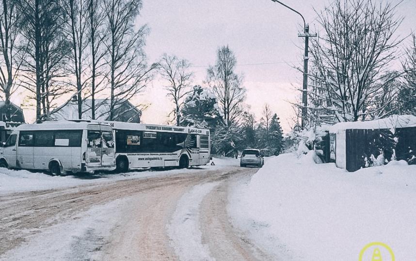 Маршрутка столкнулсь с автобусом во Всеволожском районе. Фото vk.com/dorinspb
