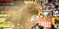 В США во время родео бык убил одного из лучших наездников в мире
