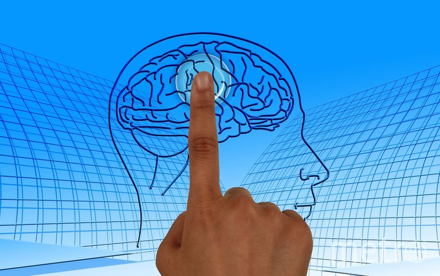 Новое приложение поможет улучшить концентрацию внимания. Фото pixabay.com