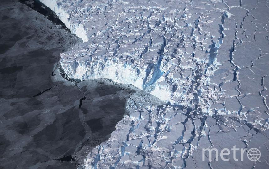 Под льдами Антарктиды обнаружена жизнь. Фото Getty
