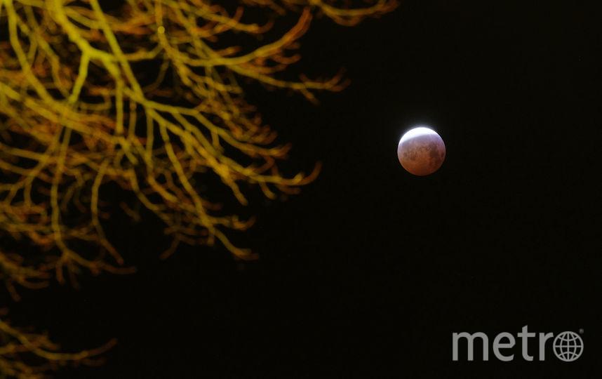 Луна во время затмения 21 января 2019 года, фото сделаны в Нидерландах. Фото Getty