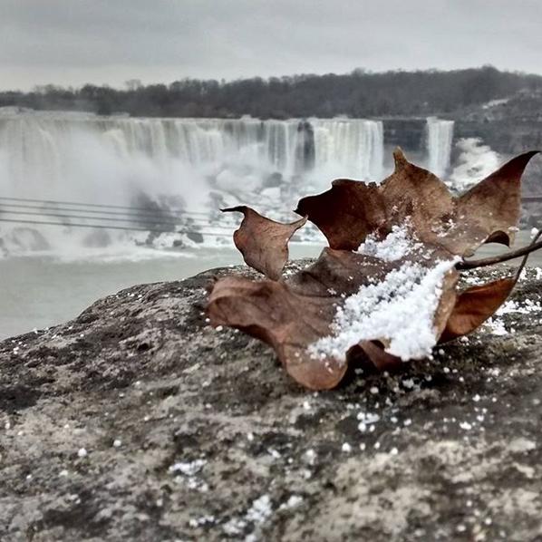 Ледяными видами восхищаются пользователи в Сети. Фото Скриншот instagram.com/jospablos/