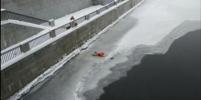 Горожане сняли видео, как спасали утку на Обводном канале в Петербурге