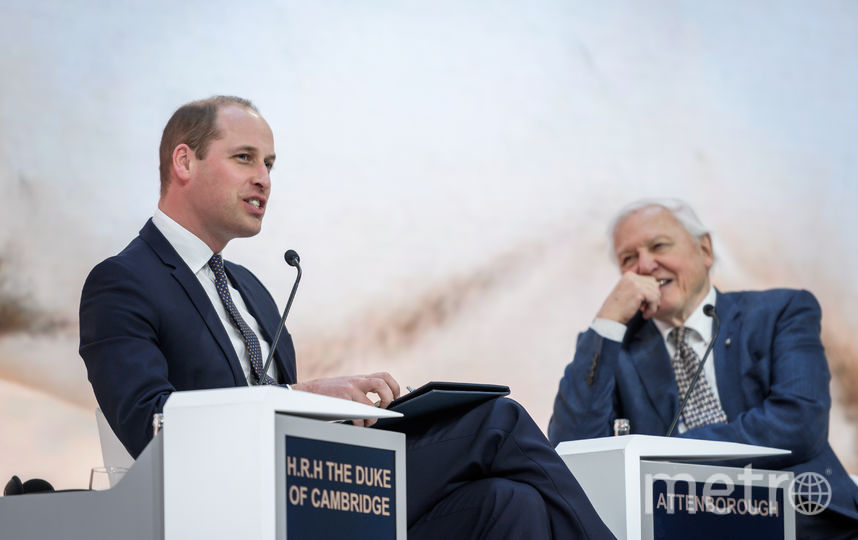 Принц Уильям на экономическом форуме в Давосе. Фото AFP