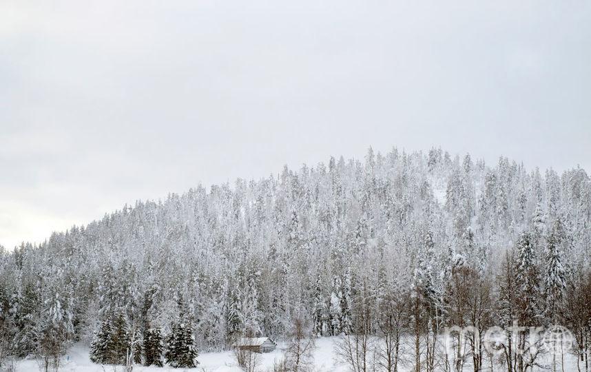 Финляндия. Фото Getty
