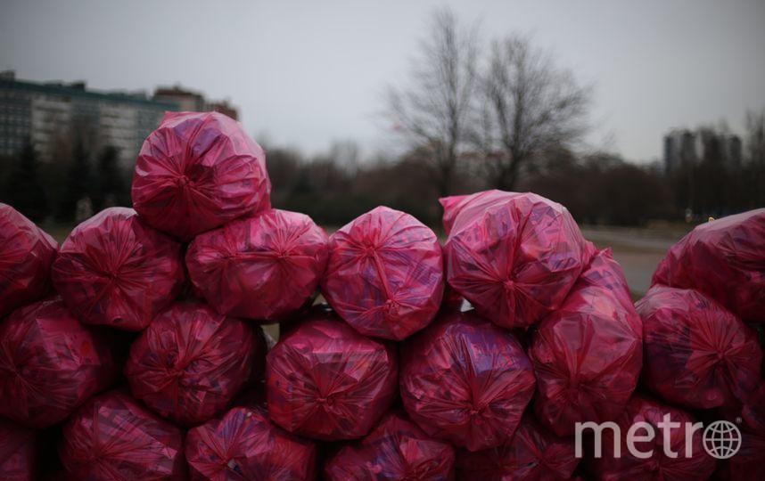 Акция по раздельному сбору мусора. Фото предоставлено активистами