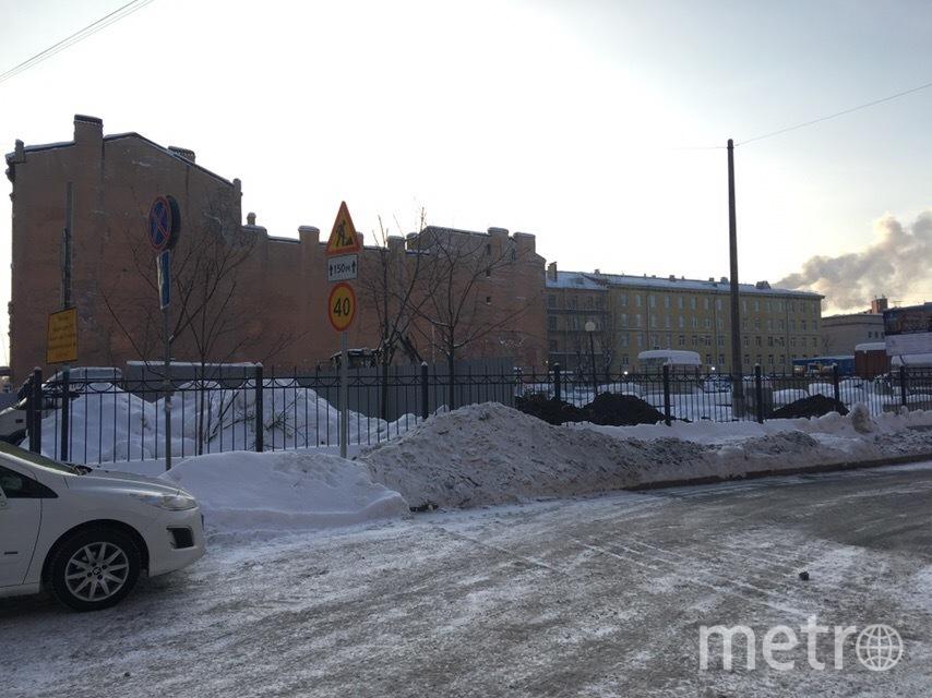 Петербуржцы возмущены сносом сквера на Тележной. Фото mytndvor, vk.com
