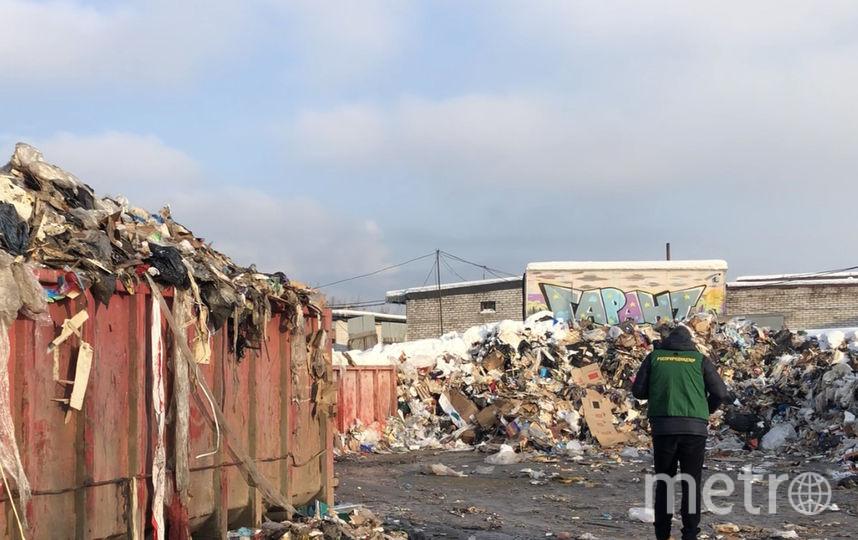 В Петербурге обнаружили свалку с гниющими отходами. Фото 78.rpn.gov.ru