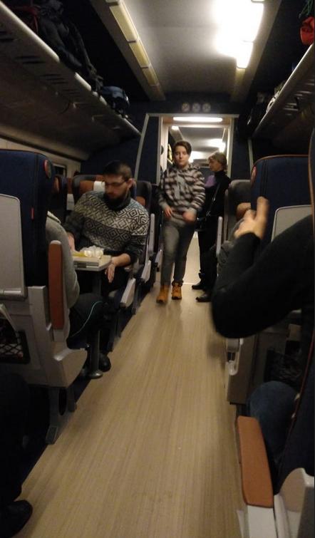 """Поезд """"Аллегро"""" сломался возле границы России и Финляндии. Фото vk.com/spb_today"""