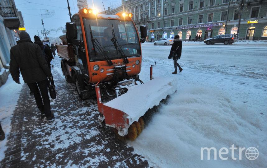 """В Петербурге неделя начнется с мокрого снега и плюсовой температуры. Фото Святослав Акимов, """"Metro"""""""