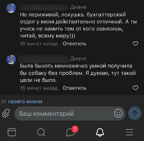 Фрагменты общения пользователей сети с Натальей. Фото Скриншоты читательницы, vk.com