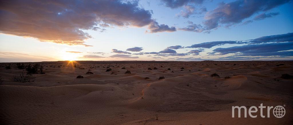 Кебили, Тунис. Фото Getty