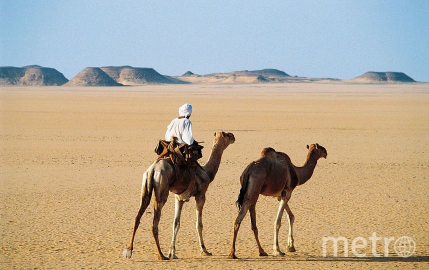 Вади-Хальфа, Судан. Фото Getty
