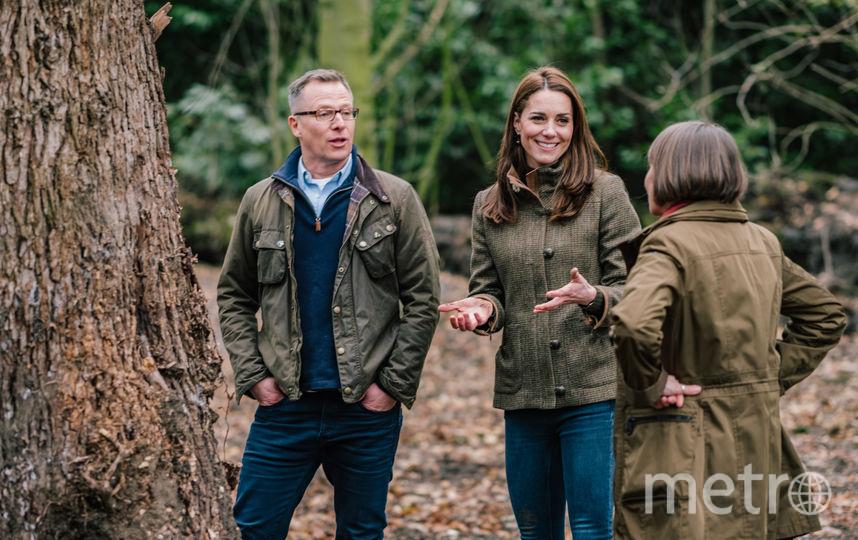 """Обсуждение, каким будет сад """"Назад к природе"""" в Челси. Фото Getty"""