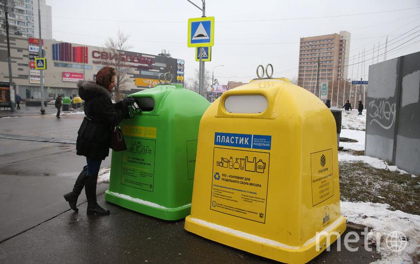 Пока что москвичи выкидывают мало мусора в раздельные контейнеры, но экологи надеются, что дело пойдёт. Фото Василий Кузьмичёнок