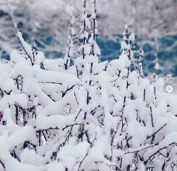 """""""Зимняя сказка! Всем хорошего и позитивного дня"""". Фото Скриншот instagram.com/mio_mai_/"""