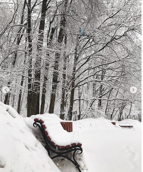 """""""Когда выходишь утром на улицу и забываешь дышать .. Зима, весна и снова зима.. Ким Ки-Дук бы удивился. В Москве свои времена года. Природа - непревзойденный художник"""". Фото Скриншот instagram.com/p/Bt0FCvRAFth/"""