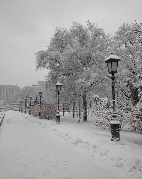 """А снег идёт, а снег идёт"". Фото Скриншот instagram.com/p/Bt0E97Pnv98/"