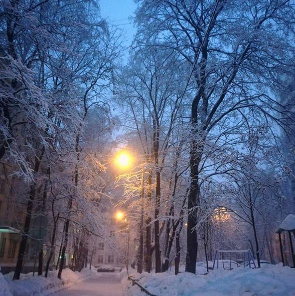 """""""Засыпала в слякоть, а проснулась в снежной сказке"""". Фото Скриншот instagram.com/chamomilla1819/"""