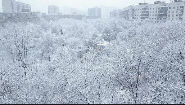 """""""Все сегодня делают это, ну и я поддерживаю челлендж """"Сказочная Москва"""". Фото Скриншот instagram.com/lisasladkova/"""