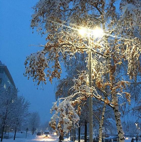 """Снежно"". Фото Скриншот instagram.com/autoport_service/"