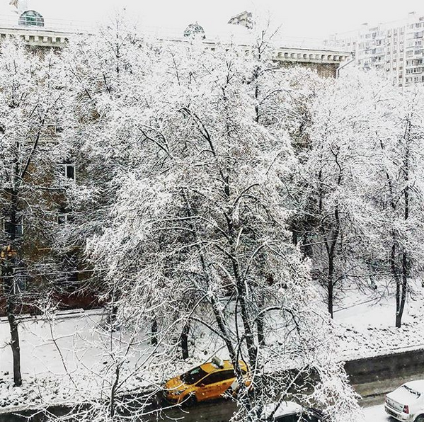 """Snowy"". Фото Скриншот instagram.com/p/Bt0D43FhkiH/"