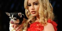 На неделе моды в Нью-Йорке на подиум вышли четвероногие модели