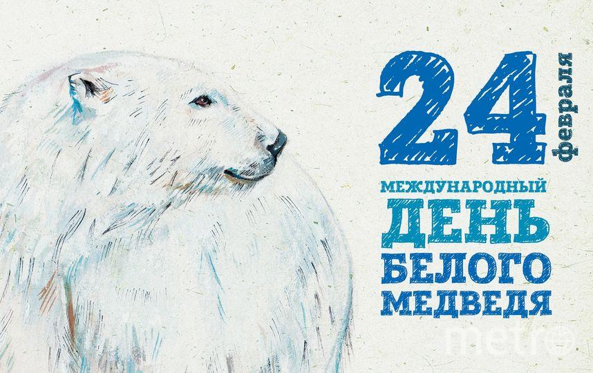 "Фото: Ленинградский зоопарк. Фото ""Metro"""