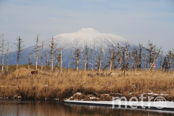 Действующий вулкан Тятя на острове Кунашир. Фото РИА Новости