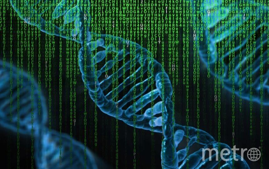 """Генетический паспорт расскажет о предрасположенности к наследственным болезням. Фото https://pixabay.com, """"Metro"""""""
