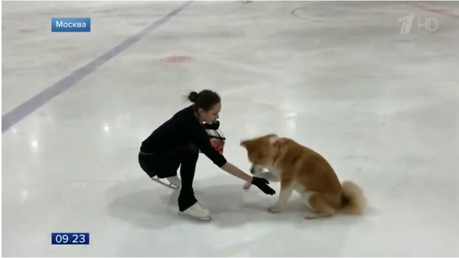 Алина Загитова с собакой Масару.