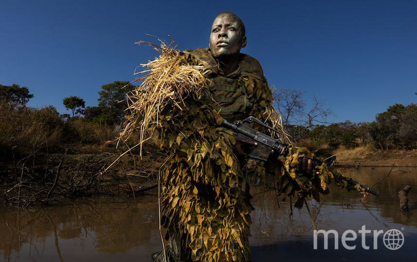 Акашинга, автор – Брент Стиртон/Getty. Фото Getty