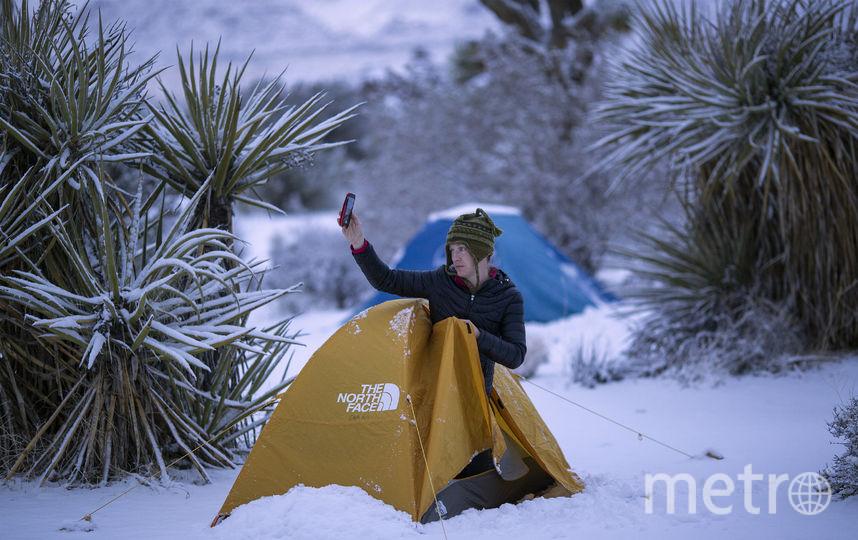 Национальный парк Джошуа-Три в Калифорнии. Фото Getty