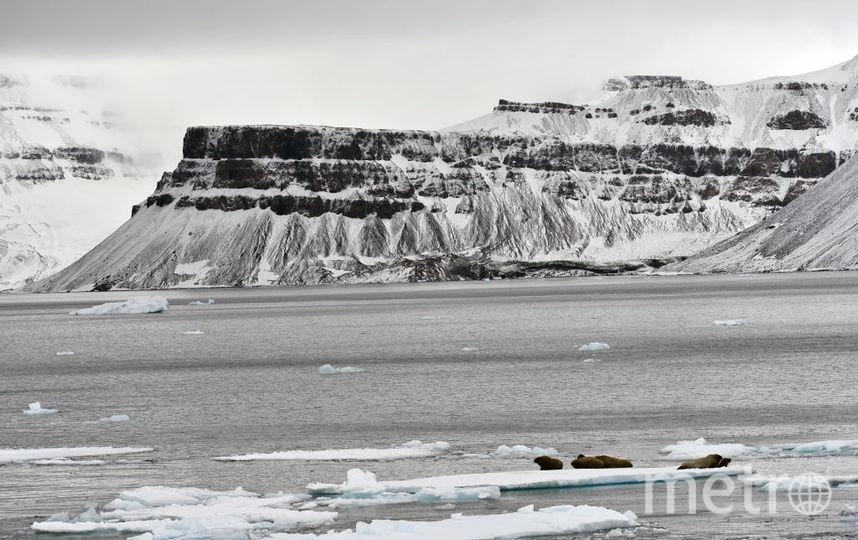 Полюсный отряд под руководством Матвея Шпаро отравится в 100-километровое лыжное путешествие по дрейфующим льдам. Фото Getty