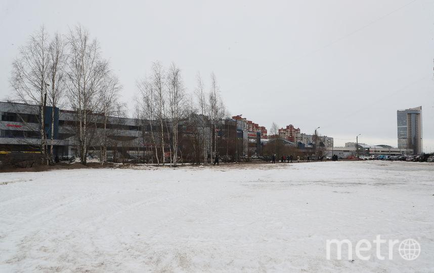 """Так территория выглядела в середине февраля. Фото gov.spb.ru, """"Metro"""""""
