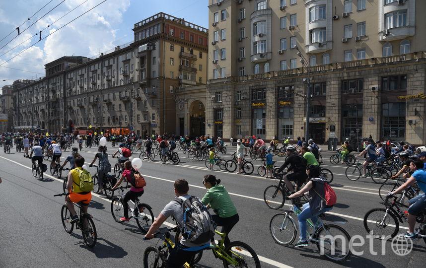 Первый весенний московский Велофестиваль пройдёт 19 мая. Фото Василий Кузьмичёнок