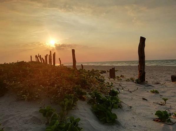 Пляж Плайя Норте, Мексика. Фото Скриншот instagram.com/anakraken/