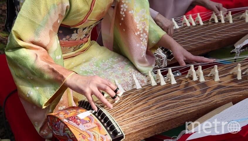"""Фестиваль японской культуры """"Сакура"""". Фото Предоставлено организаторами"""