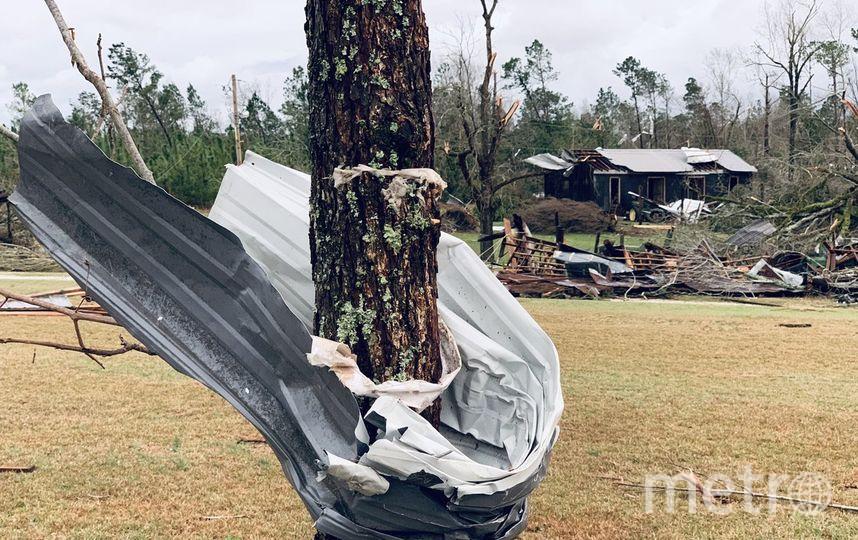 """Металлический лист буквально обернуло вокруг дерева - так бушевал торнадо. Фото Twitter, """"Metro"""""""