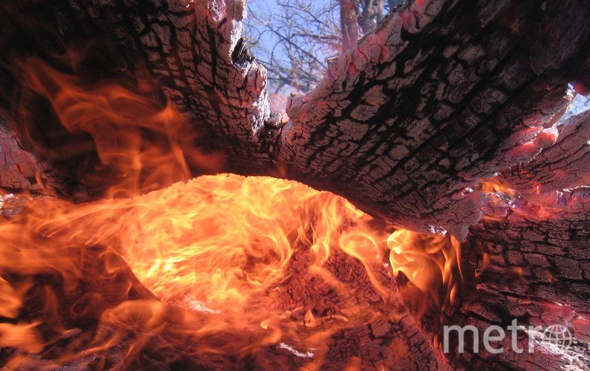 Информации о пострадавших в результате пожара пока нет. Фото Pixabay