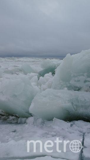 Ледяная красота: Завораживающие фото ледяных торосов на Финском заливе. Фото Владимир Ширяев.