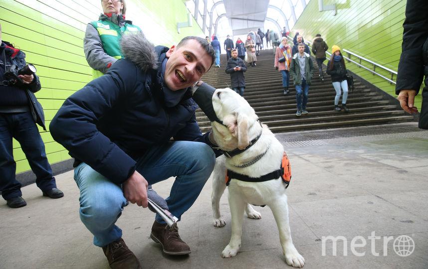 Репортёр Metro быстро подружился  с Чатером. Фото Василий Кузьмичёнок